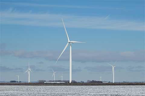 Winter Wind Turbines in a field