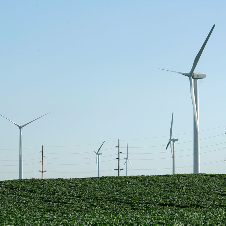 Turbines in Iowa soybean field