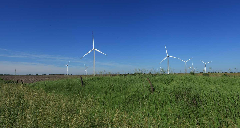 Iowa wind turbines, green grass